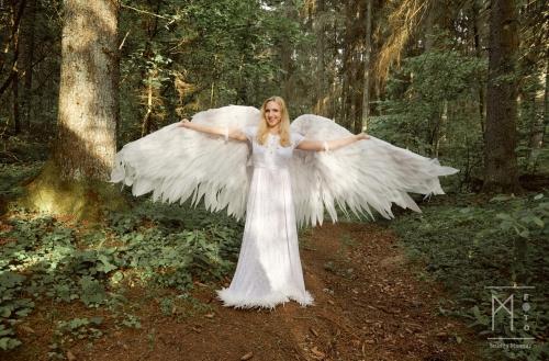 Angels and Gypsies 11